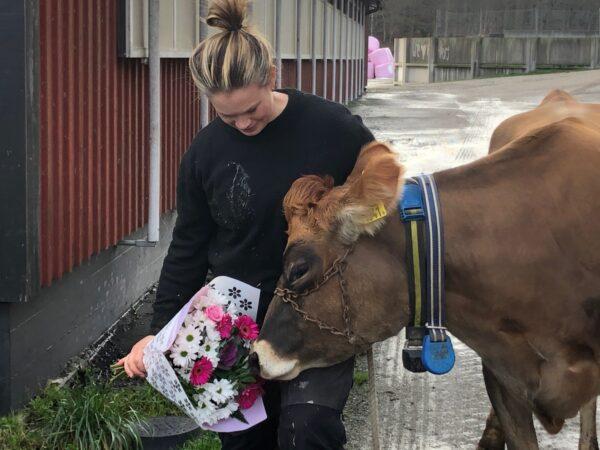 Foto på Lola Ivarsson med kon Ada som luktar på blommorna.