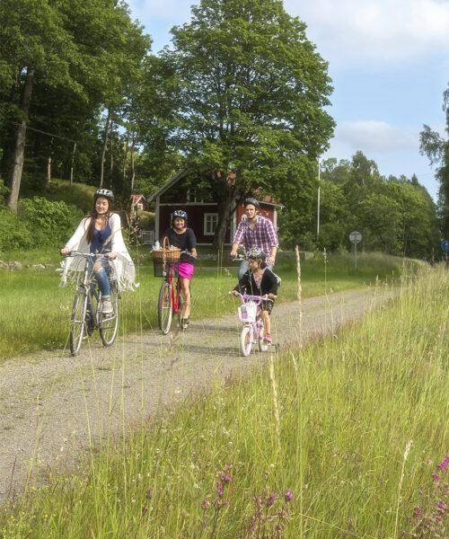 Barnfamilj som cyklar