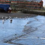 Foto på översvämning vid småbåtshamnen i Näsviken