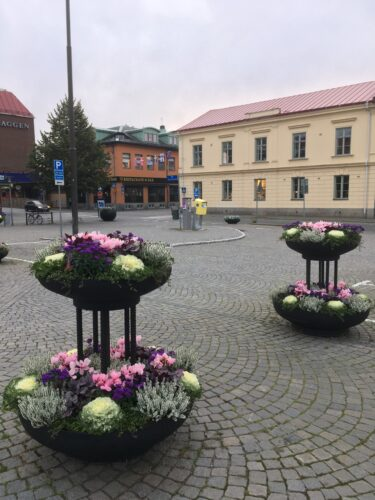 Höstblommor på Karlshamns torg