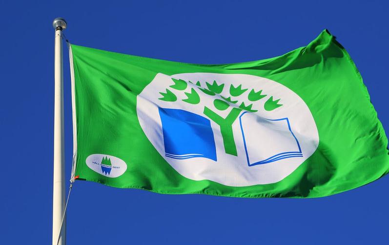 Foto på Grön flagg flagga