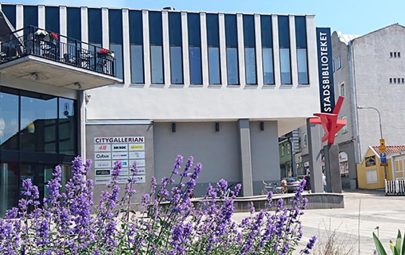 foto på stadsbibliotekets fasad från Mieån med lila blommor i förgrunden.