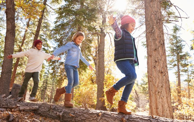Tre barn balanserar på en stock i skogen.